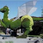 ЗЕЛЕНЫЕ ФИГУРЫ - ТОПИАРНОЕ ИСКУССТВО,Газоны, клумбы, цветники, топиарное искусство