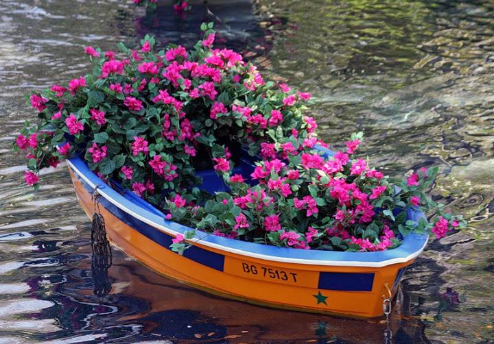 : bed, flower gardens, декоративные клумбы, дом и сад, красивый сад своими руками, ландшавтный дизайн, ланшафтний дизайн фото, современный ландшафтный дизайн, фирмы по ландшафтному дизайну, цветы ландшафтный дизайн
