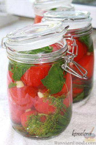 как солить помидоры,соление помидор,помидоры маринованные