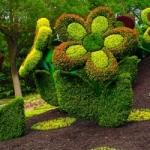 Зеленые фигуры, для дачи, на даче, цветники, клумбы