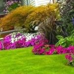 Газон, цветники, клумбы, для дачи, ландшафтный дизайн