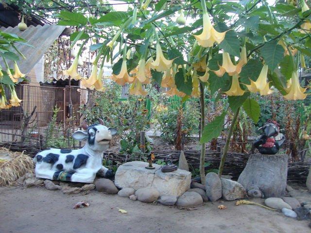 Поделки для сада своими руками: 9 фигурок с мастер
