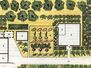 планировка дачного участка, как планировать участок, как распланировать участок