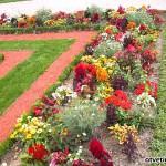 Бордюры , клумба, газон, бутылка, цвета, цветник, трава, кирпич, вид, пластиковый