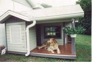 будка +для собаки,будка +для собаки +своими руками,куплю будку +для собаки,будка +для собаки чертеж,+как сделать будку +для собаки,+как построить будку +для собаки