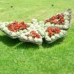Приподнятые клумбы, клумбы фото, клумбы цветов, клумбы +своими руками, клумбы +и цветники, озеленение, альпийская горка, ландшафтный дизайн, газон, садоводство, цветники, цветники +своими руками