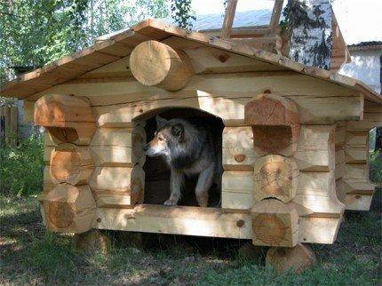 Как сделать хорошую будку для собаки