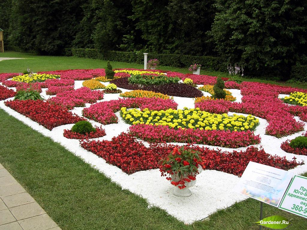 """,ландшафтный дизайн,газон,садоводство,цветники,цветники +своими руками,+ flower with their hands,bed,flower,Landscaping"""" ,ландшафтный дизайн,газон,садоводство,цветники,клумбы,клумбы фото"""