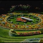 """Клумбы """"Панно"""", клумбы, цветники,озеленение,альпийская горка,ландшафтный дизайн,газон,садоводство,цветники,цветники +своими руками,+ flower with their hands,bed,flower,Landscaping"""