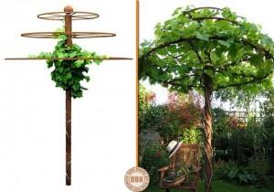 дерево,шезлонги,поделки для дачи,вырастить дерево