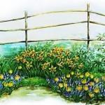 как сделать цветник,красивые цветники,фото цветников, клумбы,красивые клумбы